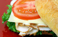Turkey Sandwich Royalty Free Stock Images - 6231219