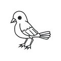Standing Bird Outline Royalty Free Stock Images - 62333049