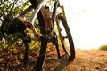 Detail Of Cyclist Man Feet Riding Mountain Bike On Outdoor Stock Images - 62343104