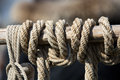 Close-up Of Rope With Knot Stock Photos - 62360813