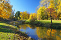 Autumn Park With Colorful Trees Stock Photo - 62450200