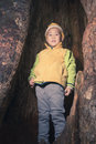 Kid In Tree Hole Royalty Free Stock Image - 62452136