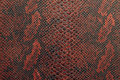 Texture Of Snake Skin In Black And Red Shade Stock Photos - 62498393