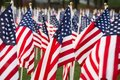 Stars And Stripes Stock Photo - 6251200