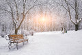 Snow-covered Trees And Benches In The City Park Royalty Free Stock Photos - 62519238