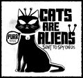 Cats Are Aliens Royalty Free Stock Photography - 62520967
