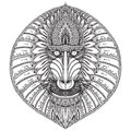 Hand Drawn Vector Ornate Baboon Face Illustration. Royalty Free Stock Image - 62529386