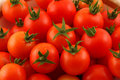 Closeup Of Cherry Tomatoes With Green Stems Stock Photos - 6261453
