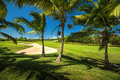 Golf Course. Beautiful Landscape Of A Golf Court With Palm Trees Stock Image - 62653811