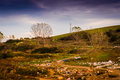 Polluted Natural Landscape Stock Image - 62679501
