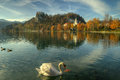 Lake Bled, Castle Bled And Church St. Marina -  Autumn Picture Stock Images - 62756964