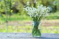 Lily Of The Valley Royalty Free Stock Photos - 62813568