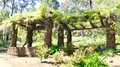 Garden Limestone Arbor With Hanging Wisteria Stock Images - 62909974