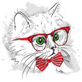Hand Draw Cat In The Glass And Mustache. Vector Illustration Royalty Free Stock Image - 62975766