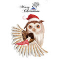 Illustration: The Girl And The Owl - Merry Christmas Card. Royalty Free Stock Photography - 63093547