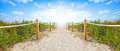 Path Of Sand Going To The Beach And Ocean In Miami Beach Florida Royalty Free Stock Image - 63100846