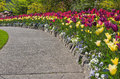 Walkway In A Spring Garden Stock Images - 63124994
