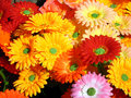 Artificial Flowers Stock Photography - 6322972