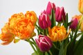 Flower Arrangement Stock Image - 63287061