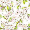 A Seamless Floral Pattern With An Ornament Of An Apple Tree Branch With The Tender Pink Blooming Flowers And Green Leaves, Painted Royalty Free Stock Photography - 63320177