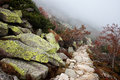 Mist On Mountain Path Royalty Free Stock Images - 63333209