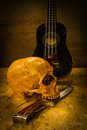 Still Life Love Skull Stock Photo - 63367220