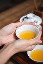 Female Hands Holding Cup With Tea Royalty Free Stock Images - 63402669