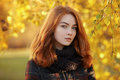 Close Up Portrait Young Beautiful Redhead Woman In Scarf And Plaid Jacket Against Autumn Foliage Background Cold Season Outdoors Royalty Free Stock Image - 63442606