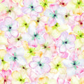 A Seamless Floral Pattern With The Tender Pink Apple Tree Blooming Flowers, Painted In A Watercolor Stock Image - 63443701
