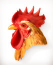 Rooster Head Illustration Royalty Free Stock Photos - 63474378