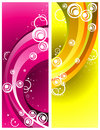 Curves Abstract Vector Royalty Free Stock Photo - 6354225