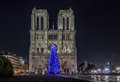 Christmas Tree At Notre Dame De Paris Royalty Free Stock Photos - 63626268