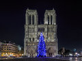 Christmas Tree At Notre Dame De Paris Stock Photography - 63626272