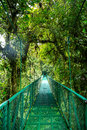 A Bridge In The Rain Forest Royalty Free Stock Photography - 63653047