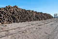Railroad Ties Royalty Free Stock Images - 63656739