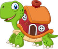 Cartoon Funny Turtle With Shell House Stock Photos - 63679303