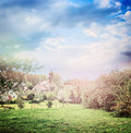 Spring Or Summer Country Village Background With Blooming Trees And Lawn In Park Stock Photo - 63680460