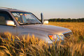 Offroad Car On Wheaten Field Royalty Free Stock Photos - 6373728