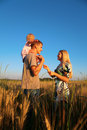 Mother And Father With Child On Shoulders On Wheat Stock Photos - 6374043