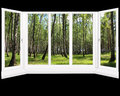 Windows Overlooking The Grove In The Spring Isolated Stock Photo - 63751930
