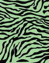 Zebra Or Tiger Stripes Colorful Pattern Background In  Royalty Free Stock Photo - 63762105