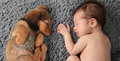 Newborn Baby And Puppy Royalty Free Stock Images - 63803409