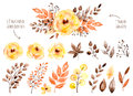 Colorful Yellow Floral Collection With Leaves And Flowers,drawing Watercolor. Royalty Free Stock Images - 63826289
