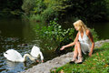 Swans Stock Photography - 6391492