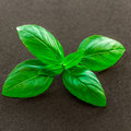 Basil Leaves Stock Images - 63904794
