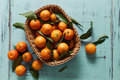 Tangerines Stock Images - 63971254