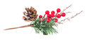 Christmas Tree Branch Red Berries And Cones Decoration Royalty Free Stock Photos - 63980818