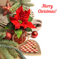 Christmas Border With Poinsettia And Winter Decorations, Text Sp Stock Photo - 63987080