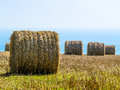 Straw Hay Bale On The Field After Harvest Royalty Free Stock Image - 64063596