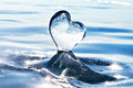 Icicle In The Form Of Heart On The Ice. Lake Baikal. Cold Heart. Royalty Free Stock Image - 64152916